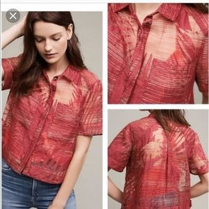 Anthropologie  (Maeve) sheer top